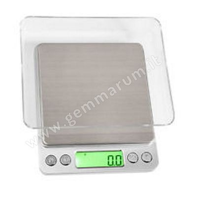 PORTABLE SCALE 500 g
