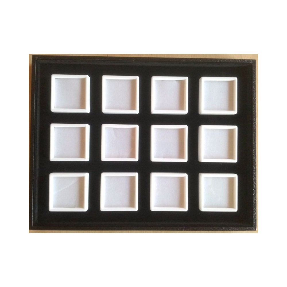 Tray with 12 boxes 5x5